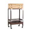 Wenko Inc Dinett Catering Trolley Serving Cart