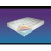 Serta Futons Redbud 9 Quot Coil Futon Mattress Amp Reviews Wayfair