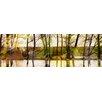 Parvez Taj Marmont Hill Lake Trees Art Print Wrapped on Canvas