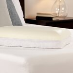 Biopedic Memory Plus Quilted Pillow With Gel Memory Foam And Fiber Amp Reviews Wayfair