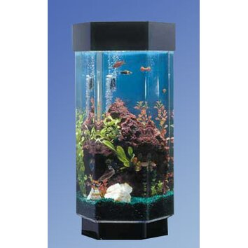 Midwest Tropical Fountain Aqua 15 Gallon Scape Hexagon