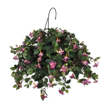 house of silk flowers artificial fuchsia hanging plant in basket reviews wayfair. Black Bedroom Furniture Sets. Home Design Ideas