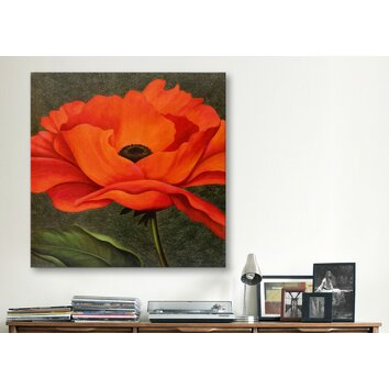 icanvas quotred poppyquot by john zaccheo graphic art on canvas With kitchen cabinets lowes with red poppy canvas wall art