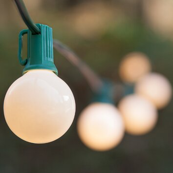 Wintergreen Lighting 25-Light Globe String Lights & Reviews Wayfair
