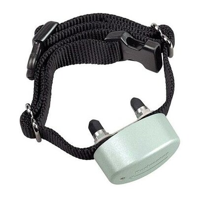 perimeter technologies comfort contact extra dog electric With electric perimeter dog collar