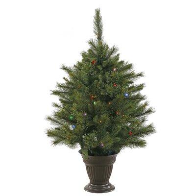 Cashmere Trees Christmas Sale