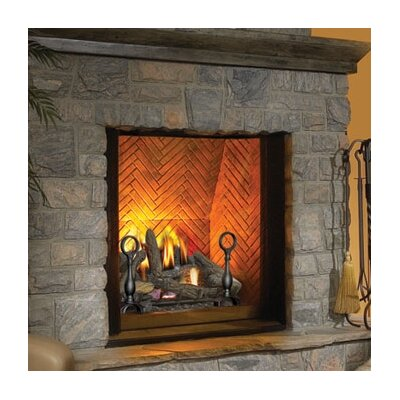 Napoleon The Dream Direct Vent Wall Mount Gas Fireplace