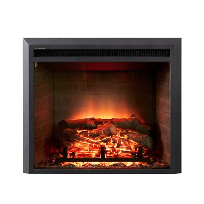 Dynasty LED Wall Mount Electric Fireplace Insert Reviews Wayfair