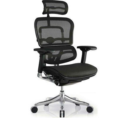Eurotech Seating Ergo Elite High-Back Chair with Arms