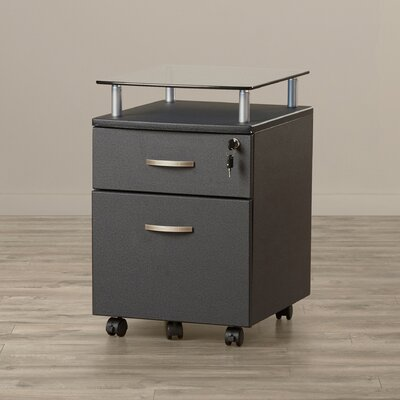 Andover Mills Onway 2 Drawer Mobile File Cabinet