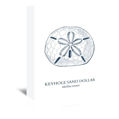 Americanflat Sand Dollar Art Print on Canvas