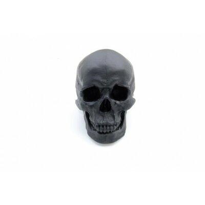 Near And Deer Replica Faux Taxidermy Human Skull Figurine