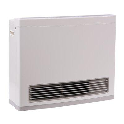 Rinnai R Series 24,000 BTU Wall Insert Natural Gas Fan Heater
