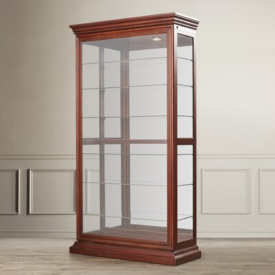 Darby Home Co Goldenberg Curio Cabinet