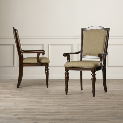 Alcott Hill Rheems Arm Chair (Set of 2)