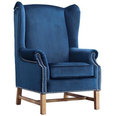 House of Hampton Litvak Velvet Arm Chair