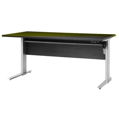 Latitude Run Bianca Desk Shell with Adjustable Height