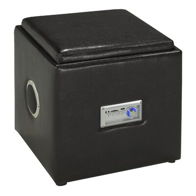 Brassex Storage and Bluetooth Audio Ottoman
