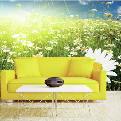 Ohpopsi sunshine daisy wall mural wayfair uk for Daisy fuentes wall mural