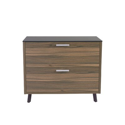Eurostyle Hart 2 Drawer Lateral File Cabinet