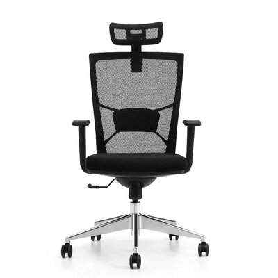 Lone Star Chairs Ergonomic High-Back Mesh Desk Chair