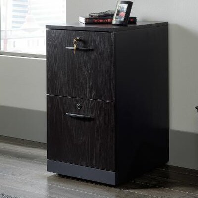 Red Barrel Studio Alchemist Two Drawer Pedestal Vertical Filing Cabinet