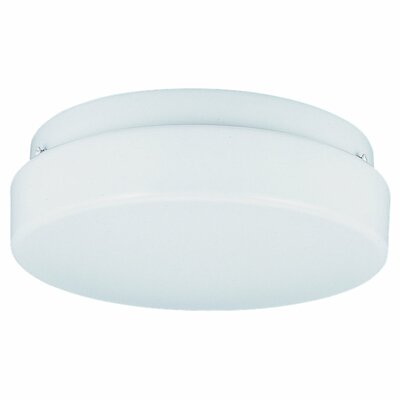 Sea gull lighting 2 light fluorescent wall fixture flush mount wayfair for Fluorescent bathroom light fixtures wall mount