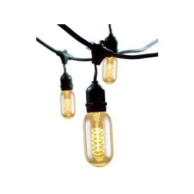 Bulbrite Industries 15-Light 48 ft. Globe String Lights & Reviews Wayfair