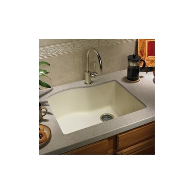 swanstone kitchen sink reviews swanstone swanstone classics 24 quot x 21 quot single bowl kitchen 5957