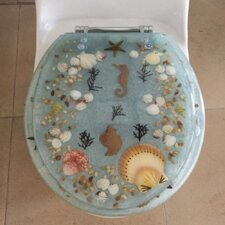 Toilet Seats You Ll Love Wayfair