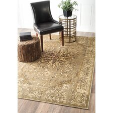 Oriental Rugs You Ll Love Wayfair