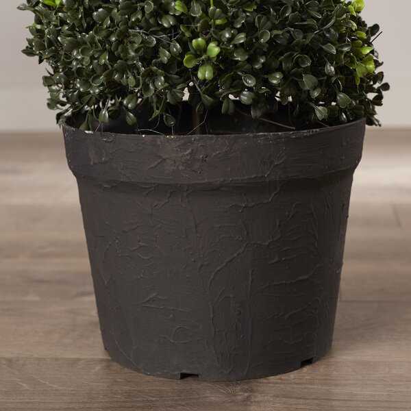 Faux Spiral Boxwood Topiary Amp Reviews Joss Amp Main