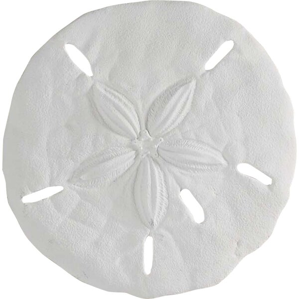 Asa sand dollar wall decor reviews joss main for Asas interhome decoration