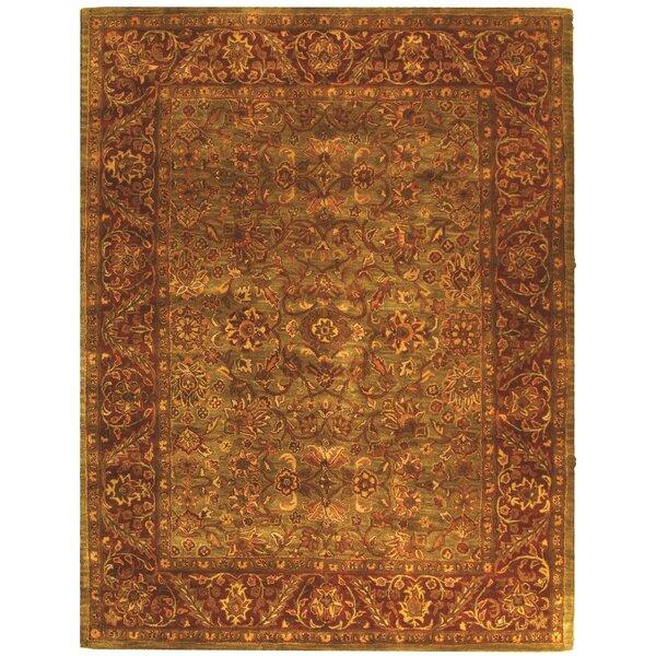 Padma Green & Rust Oriental Wool Hand-Tufted Area Rug