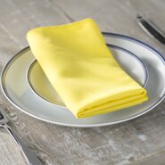 Wayfair Basics Napkin (Set of 10)