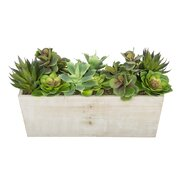Artificial Succulent Garden Desk Top Plant in Decorative Vase