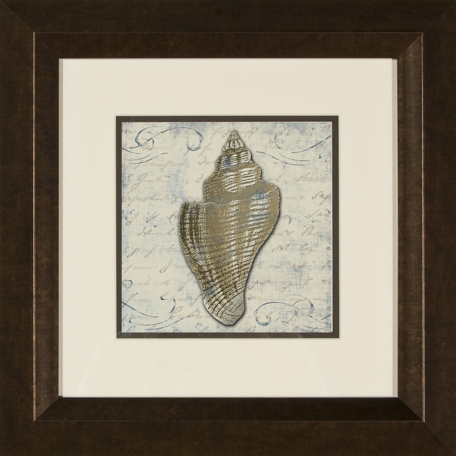 Images Bath Shells 2 Piece Framed Graphic Art Set Reviews Wayfair