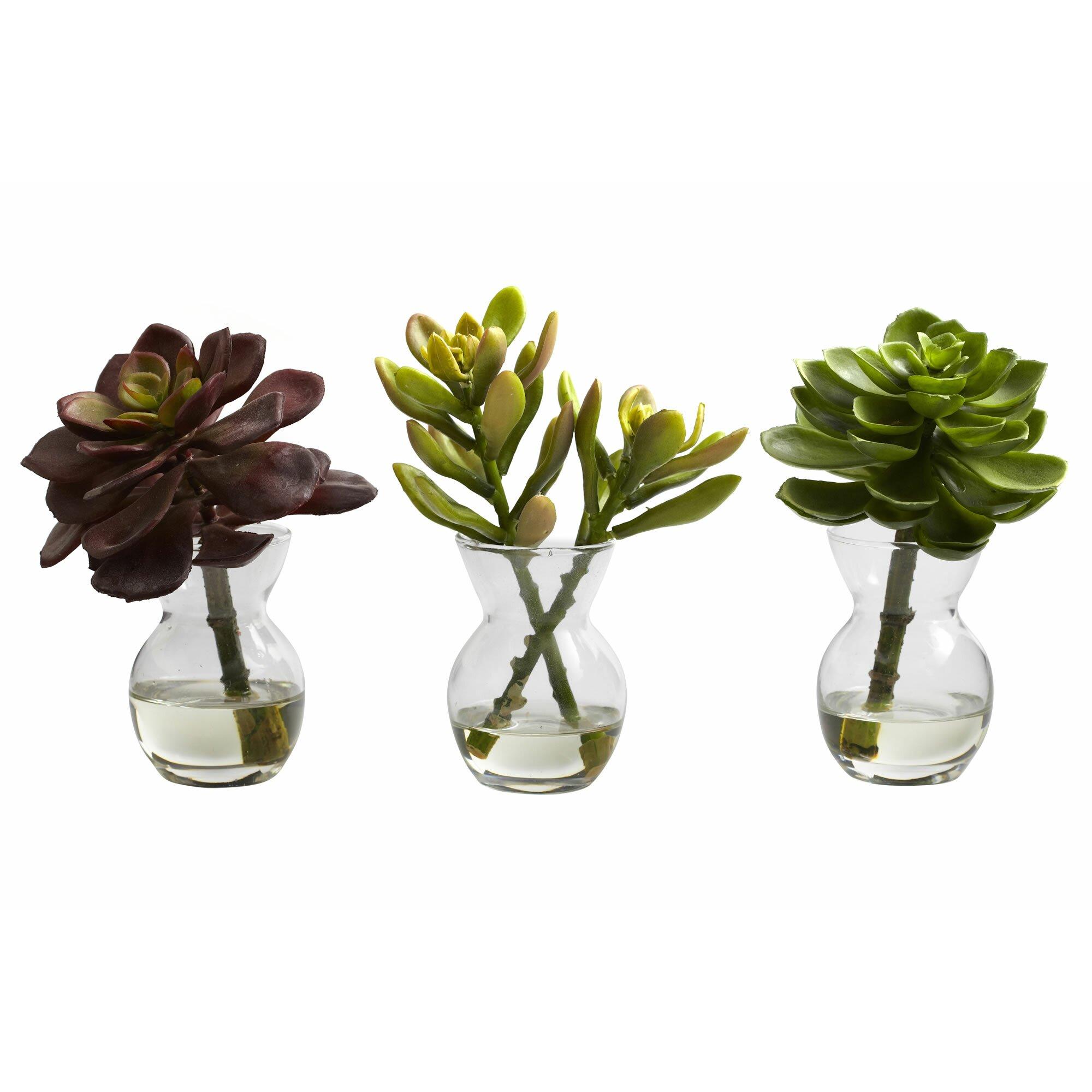 Nearly Natural Succulent Arrangements Desk Top Plant In