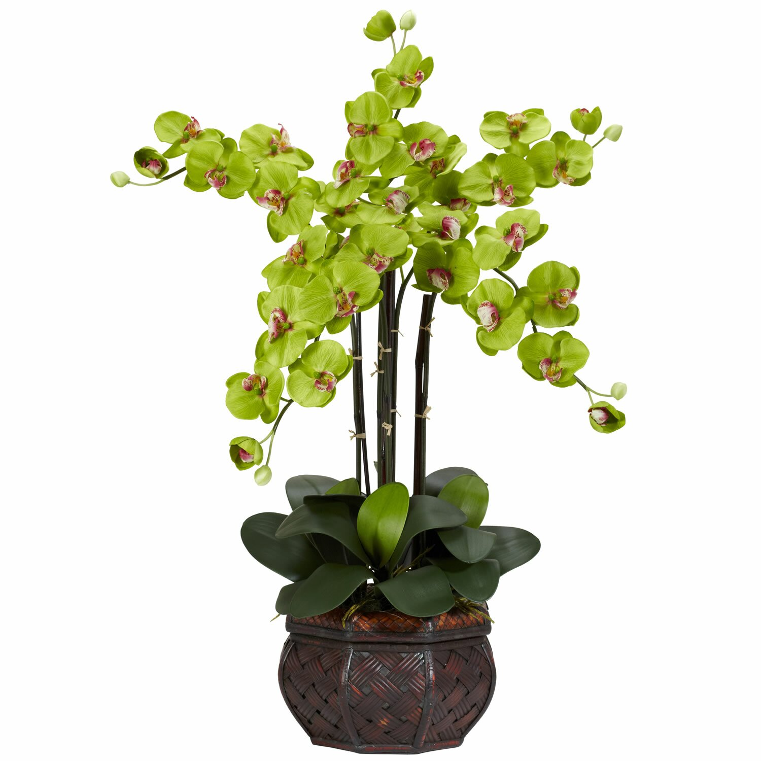 Nearly Natural Phalaenopsis with Decorative Vase Silk Flowers in Green & Reviews