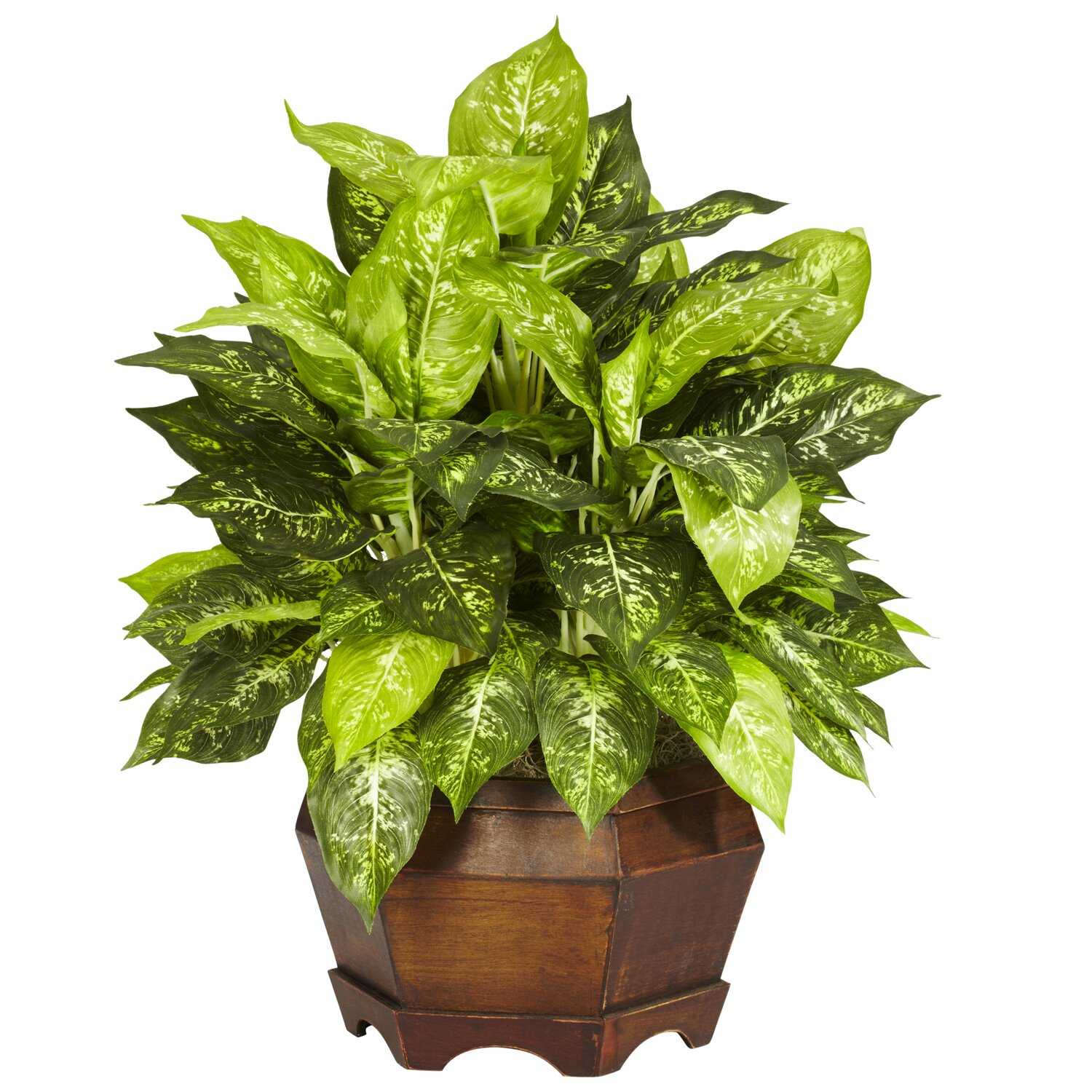 Nearly Natural Variegated Dieffenbachia Desk Top Plant in