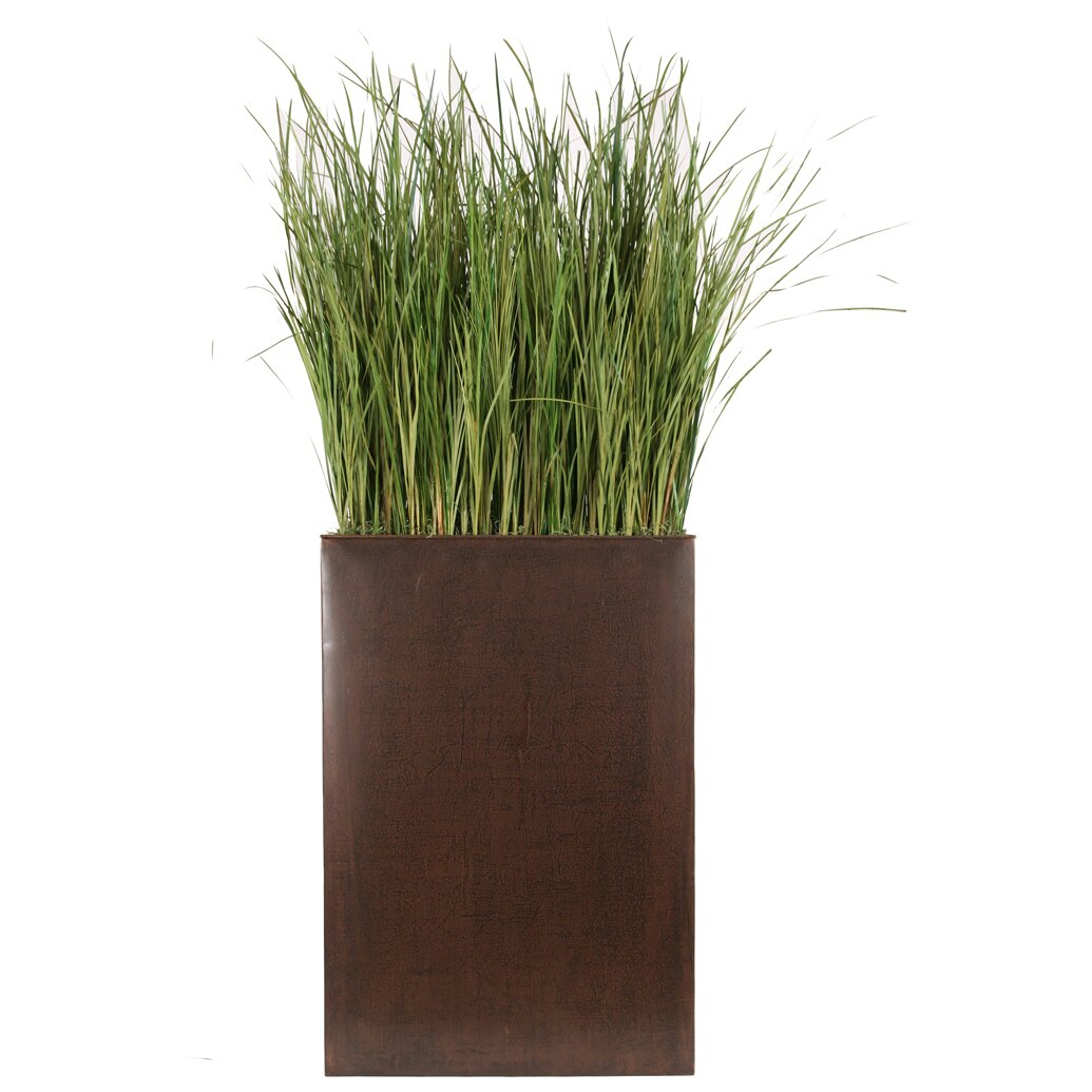 Distinctive designs tall grass in rectangular metal for Ornamental grasses for planters