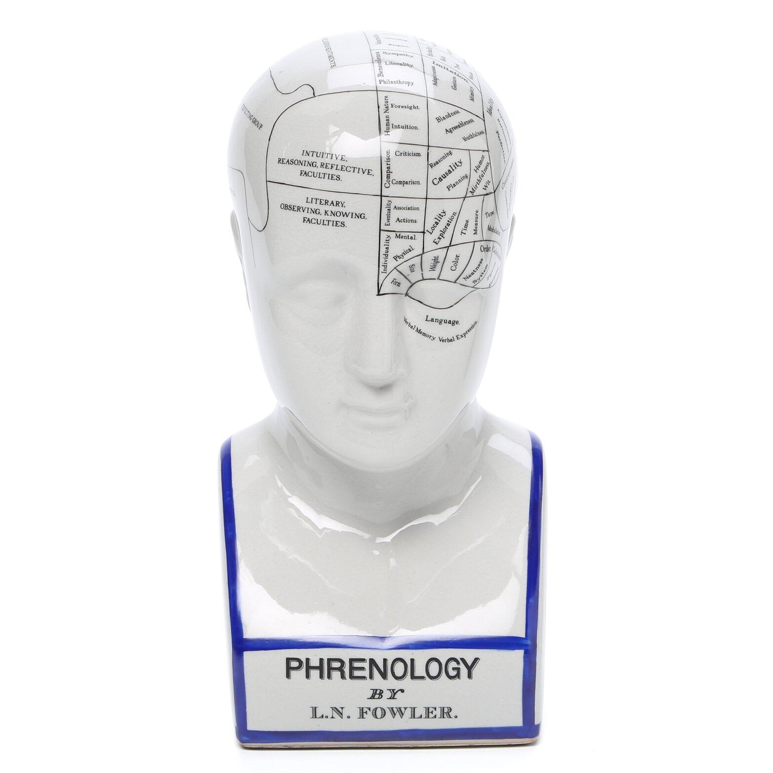 Design toscano phrenology head figurine reviews wayfair for Design toscano