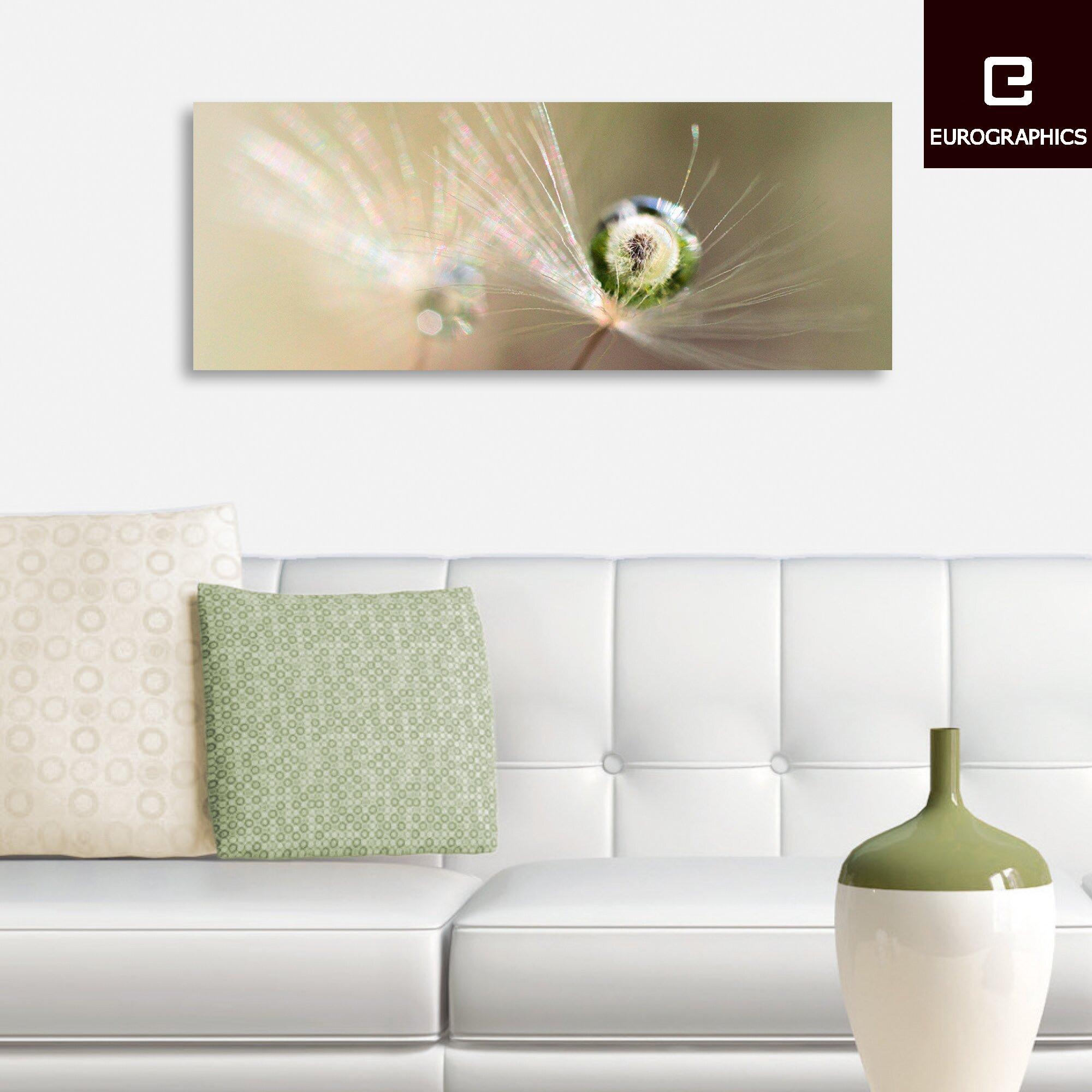 Glass Star Wall Decor : Eurographics star of dandelion by kulik bertrand