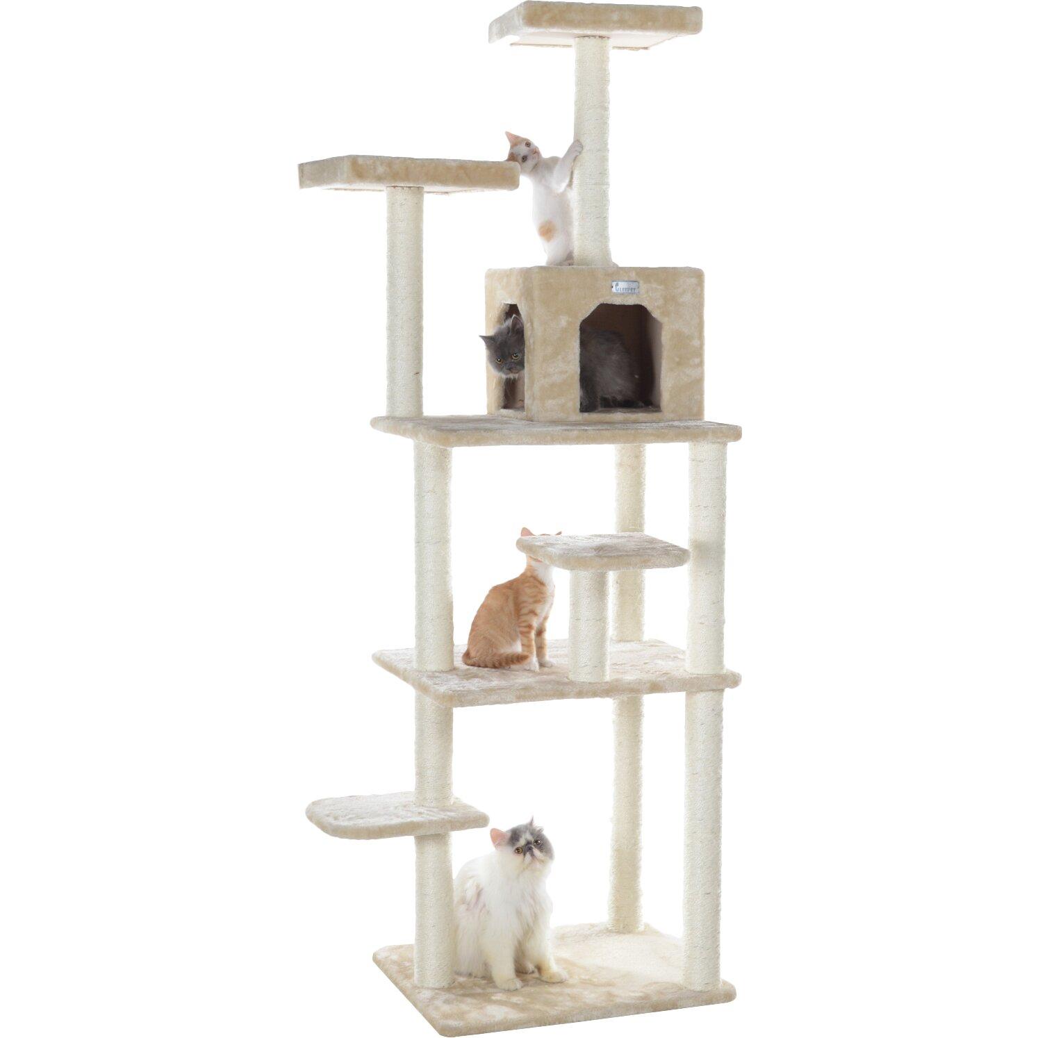 cat hanging head down