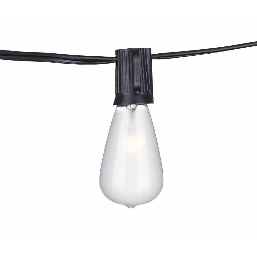 Wildon Home Eberhart 10-Light 10 ft. Globe String Lights & Reviews Wayfair
