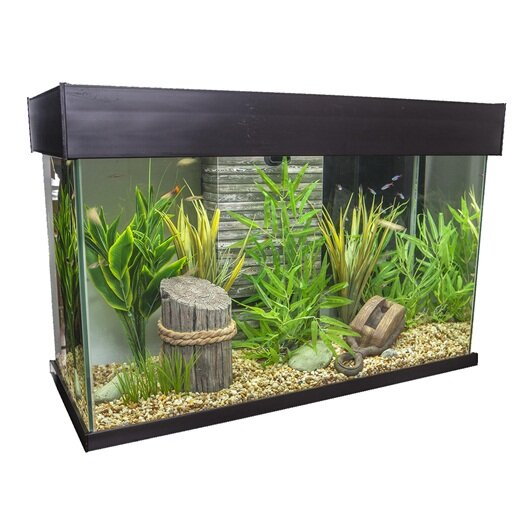 Hagen fluval 25 gallon accent aquarium wayfair for Fluval fish tank