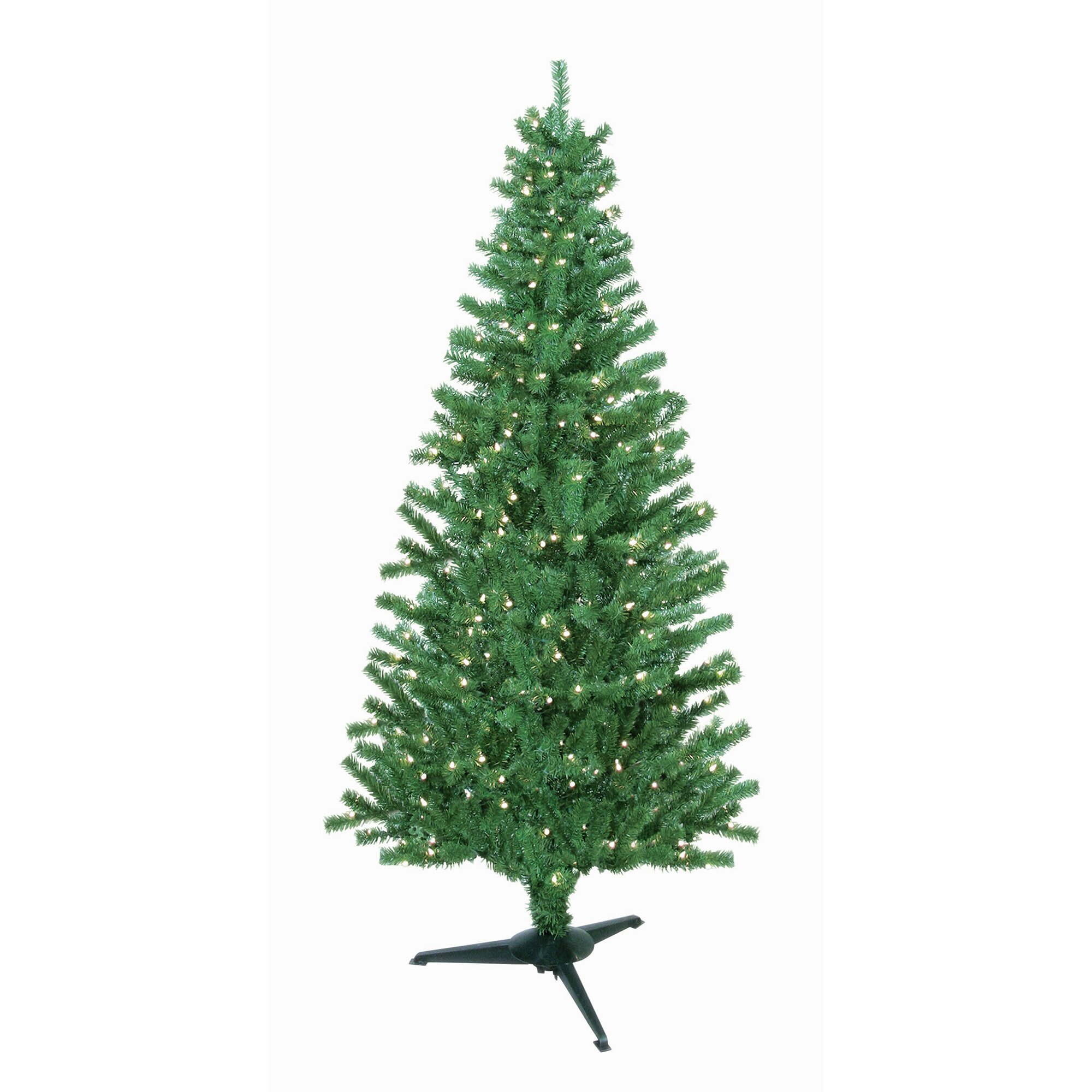 morrison christmas trees things to do in evergreen colorado conifer morrison 3166