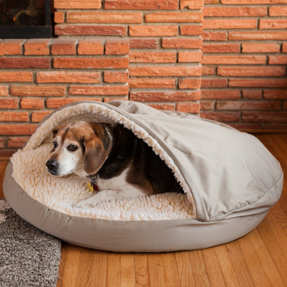 Dog Beds. Have you come home to find that your big dog has taken over your couch or bed, like you see here?!? Extra large pets need their own orthopedic memory foam bed, just as us humans do.