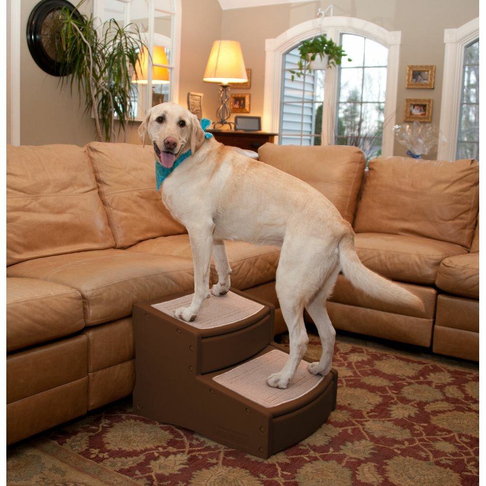Pet Gear Easy Steps Ii Extra Wide 2 Step Pet Stair