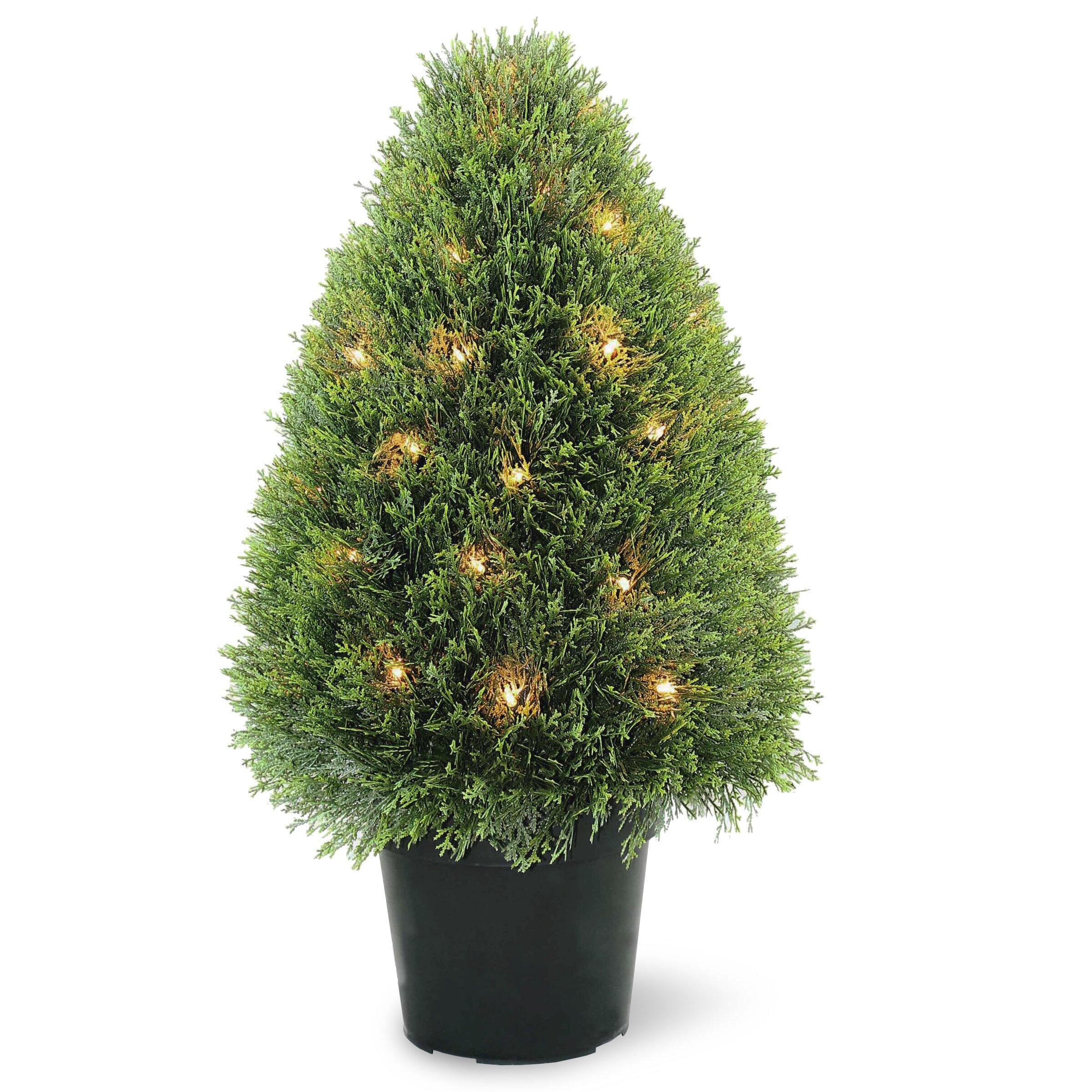 National Tree Co Pre Lit Upright Juniper Topiary In Pot